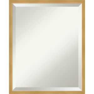 Polished Brass and Gold 17W X 21H-Inch Decorative Wall Mirror