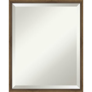 Lucie Bronze 17W X 21H-Inch Bathroom Vanity Wall Mirror