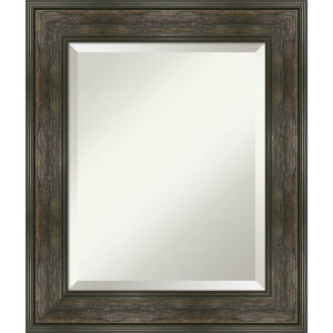 Rail Brown 22W X 26H-Inch Bathroom Vanity Wall Mirror
