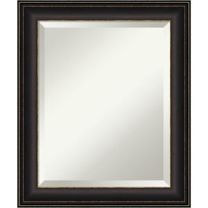 Trio Bronze 21W X 25H-Inch Bathroom Vanity Wall Mirror