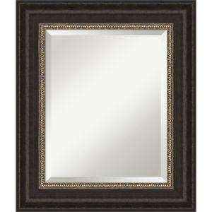 Paragon Bronze 23W X 27H-Inch Bathroom Vanity Wall Mirror