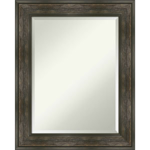 Rail Brown 24W X 30H-Inch Bathroom Vanity Wall Mirror
