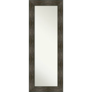 Rail Brown 20W X 54H-Inch Full Length Mirror