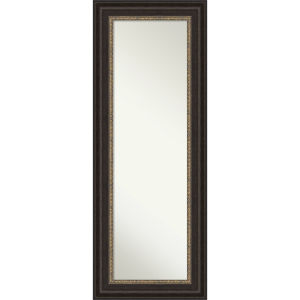 Paragon Bronze 21W X 55H-Inch Full Length Mirror