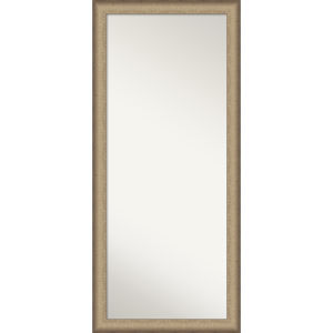 Elegant Bronze 29W X 65H-Inch Full Length Floor Leaner Mirror