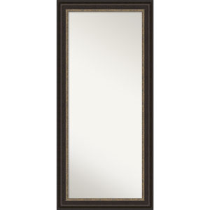 Paragon Bronze 31W X 67H-Inch Full Length Floor Leaner Mirror