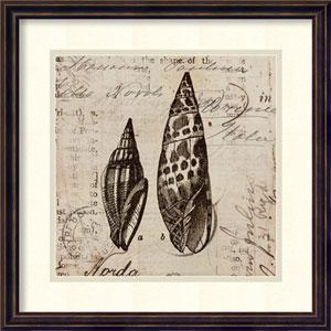 Ocean Collection III by Sabine Berg: 18 x 18-Inch Framed Art