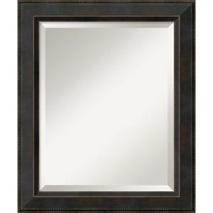 Signore 24 x 20-Inch Medium Wall Mirror