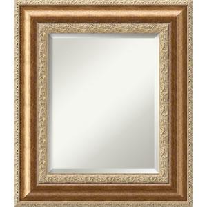 Vienna Bronze: 25 x 29-Inch Wall Mirror