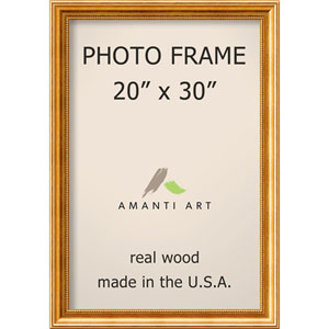 Townhouse Gold: 23 x 33-Inch Picture Frame