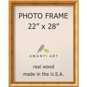Townhouse Gold: 25 x 31-Inch Picture Frame