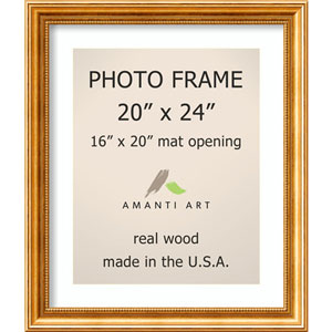 Townhouse Gold: 23 x 27-Inch Picture Frame
