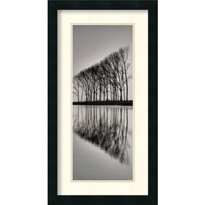 Reflections by unknown: 14 x 26 Print Reproduction