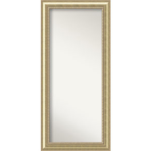 Astoria 31 x 67-Inch Floor Wall Mirror