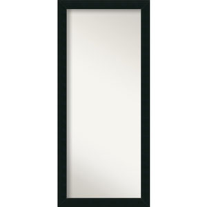 Corvino 29 x 65-Inch Floor Wall Mirror