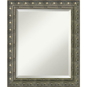 Antique Champagne 20 x 24-Inch Medium Vanity Mirror
