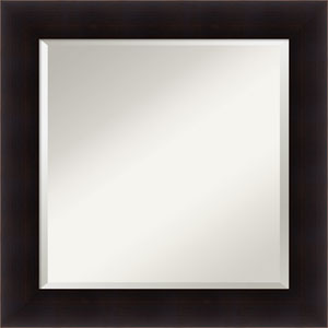 Portico Espresso, 26 x 26 In. Framed Mirror
