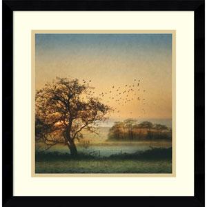 Good By Day Birds by William Vanscoy, 17 x 17 In. Framed Art Print