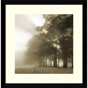 Misty Forest by Steven Mitchell, 17 x 17 In. Framed Art Print