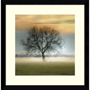 Misty Silhouette by Steven Mitchell, 17 x 17 In. Framed Art Print