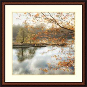 Morning Mirror 2 by Dianne Poinski, 33 x 33 In. Framed Art Print