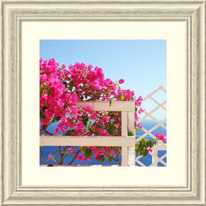 Santorini Blooms (Floral) by Sylvia Coomes, 26 x 26 In. Framed Art Print