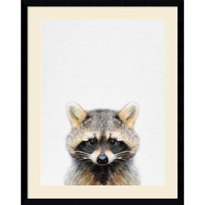 Raccoon by Tai Prints, 23 x 29 In. Framed Art Print