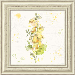 Floral Splash IV by Katie Pertiet, 19 x 19 In. Framed Art Print