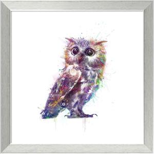 Owl by Veebee, 18 x 18 In. Framed Art Print