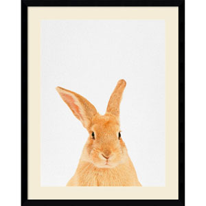 Rabbit by Tai Prints, 23 x 29 In. Framed Art Print