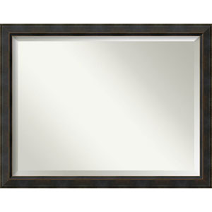 Signore Bronze 44.5 x 34.5 In. Bathroom Mirror