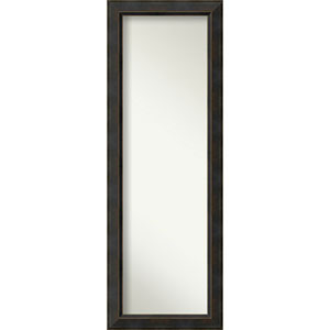 Signore Bronze 18.5 x 52.5 In. Full Length Mirror