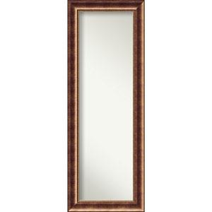 Manhattan Bronze 19.5 x 53.5 In. Full Length Mirror