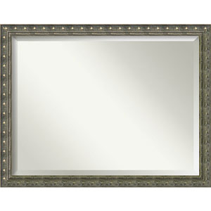 Barcelona Champagne 44 x 34 In. Wall Mirror
