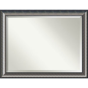 Quicksilver Scoop 46 x 36 In. Wall Mirror