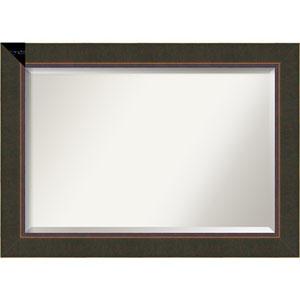 Milano Bronze 42.5 x 30.5 In. Bathroom Mirror