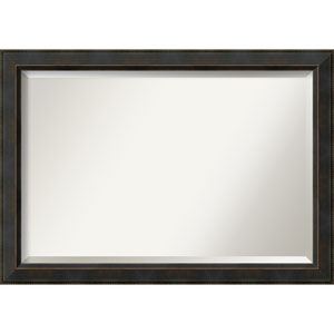 Signore Bronze 40.5 x 28.5 In. Bathroom Mirror