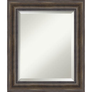 Rustic Pine 21.5 x 25.5 In. Bathroom Mirror