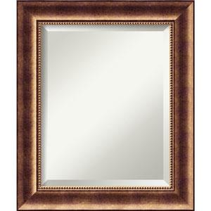 Manhattan Bronze 21.5 x 25.5 In. Bathroom Mirror
