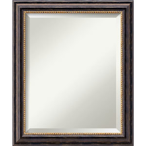 Tuscan Rustic 20 x 24 In. Bathroom Mirror