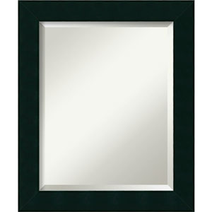 Tribeca Black 20 x 24 In. Bathroom Mirror