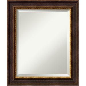 Veneto Distressed Black 21 x 25 In. Bathroom Mirror
