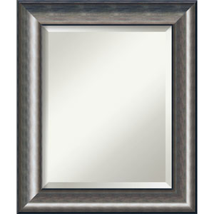 Quicksilver Scoop 22 x 26 In. Bathroom Mirror