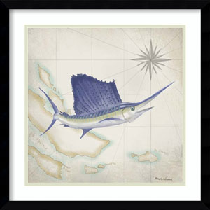Sailfish Map II by Rick Novak, 21 In. x 21 In. Framed Art
