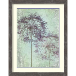 Allium Globe Master by Judy Stalus, 28 In. x 36 In. Framed Art