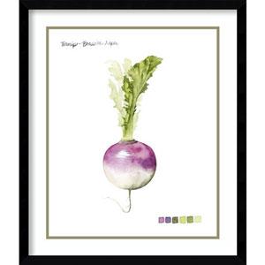 Root Vegetable VI Turnip by Grace Popp, 21 In. x 25 In. Framed Art