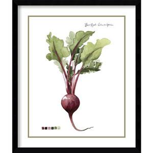Root Vegetable II Beet by Grace Popp, 21 In. x 25 In. Framed Art