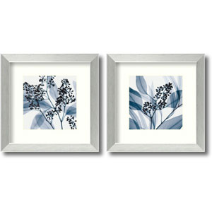 Eucalyptus - Set of Two by Steven N. Meyers: 14 x 14 Framed Prints