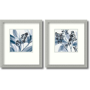 Silver Eucalyptus - Set of Two by Steven N. Meyers: 14.7 x 16.7 Framed Prints
