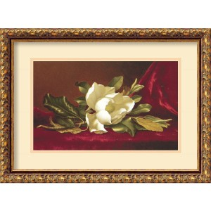 The Magnolia Flower by Martin Johnson Heade: 18.88 x 13.88 Print Reproduction
